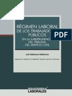 Regimen Laboral de Los Trabajadores Públicos