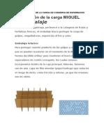 PREPARACIÓN DE LA CARGA DE CONSERVA DE ESPARRAGOS TERMINADO.docx