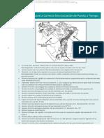 Material Procedimiento Correcta Sincronizacion Puesta Tiempo Diagrama Herramientas Goniometro Partes