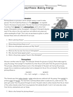 photosynthesis-worksheet | Cellular Respiration | Photosynthesis