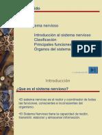 Sistema Nervioso 2009 (1)