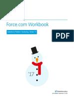 forcecom_workbook.pdf