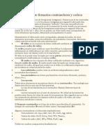 Diferencia Entre Formatos Contenedores y Codecs