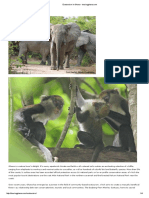 Ecotourism in Ghana - touringghana.pdf