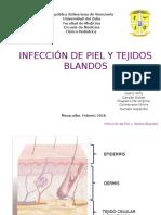 Infeccion de piel y partes blandas -SEMINARIO