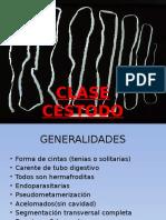 Clase Cestodo y Diphylobotrium
