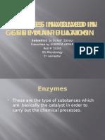 Enzymes Involved in Gene Manipulation SOMIYA