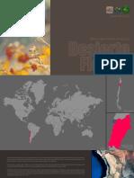 Boletin Nro.2-2015 Desierto Florido - Parque Nacional Pan de Azúcar FHD