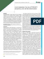 13PI3KmTOR1611.pdf