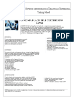 SIX SIGMA BLACK BELT CERTIFICADO + ANEXOS