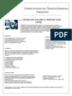 SIX SIGMA BLACK BELT CERTIFICADO + ANEXOS