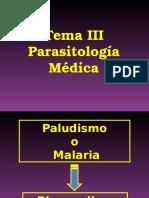 2.Plasmodium