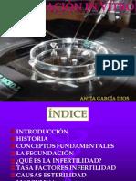 la-fecundacion-in-vitro-1