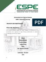 Analisis Economico Greivag Final