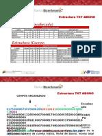 Presentación Estructura Txt Abono