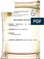 PREPARACION PROBETA MELAGROFICA