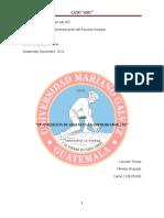 Optimizacion de Ventas en La Empresa Familiar Lourdes Teresa Mendez (3)