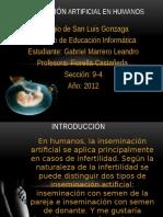 inseminacinartificialenhumanos-121016095227-phpapp01