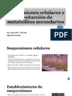 Suspensiones Celulares y Producción de Metabolitos Secundarios