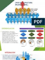 Principios de Estructura Organizacional