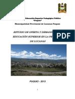ESTUDIO DE OFERTA Y DEMANDA DE LA EDUCACIÓN SUPERIOR EN LA PROVINCIA DE LUCANAS