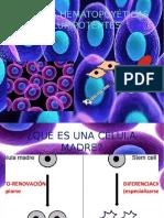 Expo Inmunologia1