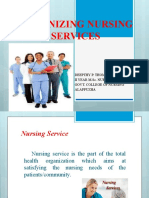 Organizing Nursing Services