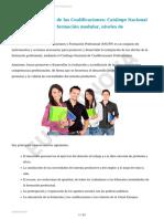 TEMA 1 - Estructura de La Formación Profesional