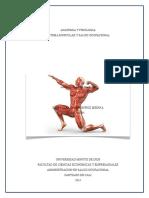 Trabajo Final Sistema Muscular