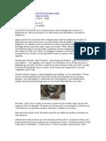 La discapacidad visual y las TIC en la etapa escolar.docx