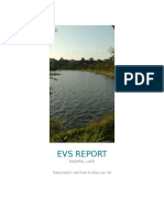 Evs Report (1)