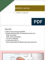 Sekresi Saliva