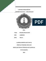 Laporan Sedimentologi Stratigrafi brandon.docx