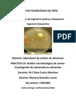 Practica 10 salmonella.pdf