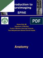 Neurorad-3 Spine Edit