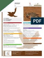 PIGEON RAMIER.pdf
