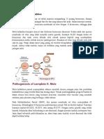 Pathogenesis Mola Hidatidosa