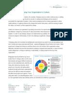 Strategies Org.pdf
