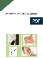 2cbc Lab Senses Edited 5