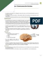Cerebro Configuracin Interna