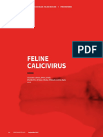 CoC Feline Calicivirus
