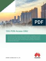 07-10g Pon Access Onu