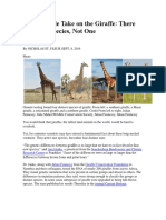 A Quadruple Take on the Giraffe