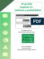 11_Estadistica.pdf