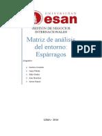 Análisis Espárragos Matriz Final.docx