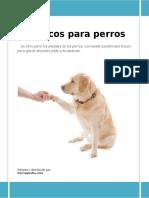 Como enseñar Trucos a tu Perro