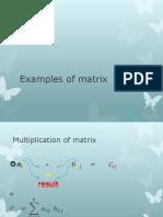 Examples of Matrix