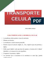 Transporte Celular Fisiologia i Usac2016