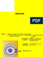 clase5meiosis-111012153933-phpapp01