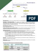 CONCEPTOS BÁSICOS DE MICROBIOLOGÍA